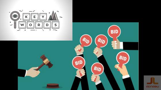 AdWords Bid Strategy Status