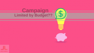 limited budget campaign