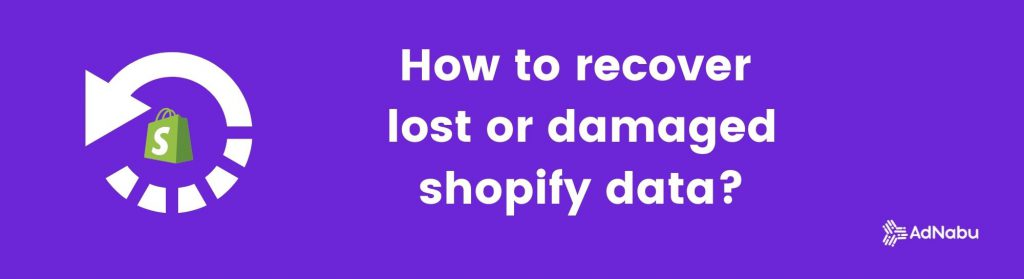 How to recover lost or damaged shopify data